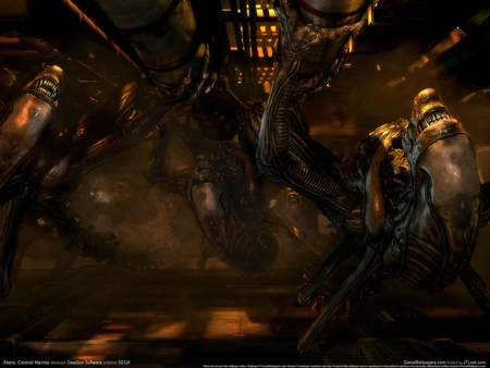 Aliens: Colonial Marines poster #123